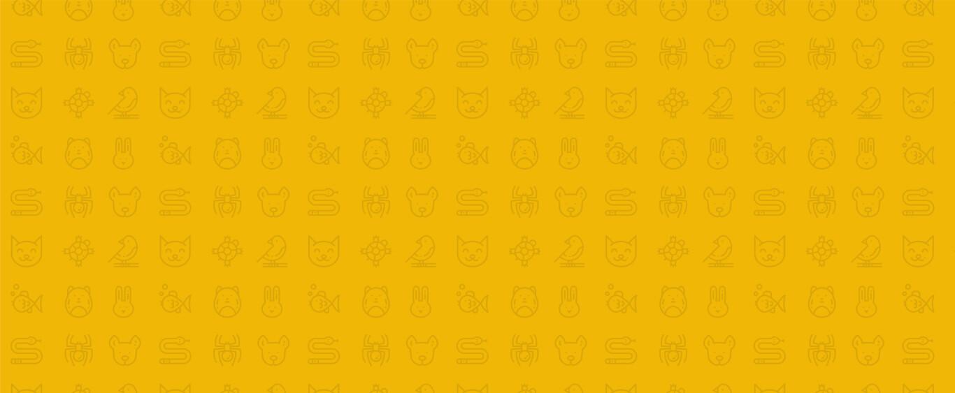 bg-amarelo